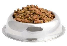 right-dog-food